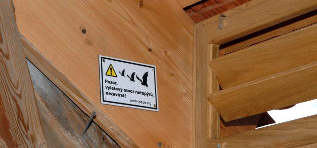 Označeny další výletové otvory používané netopýry na půdách