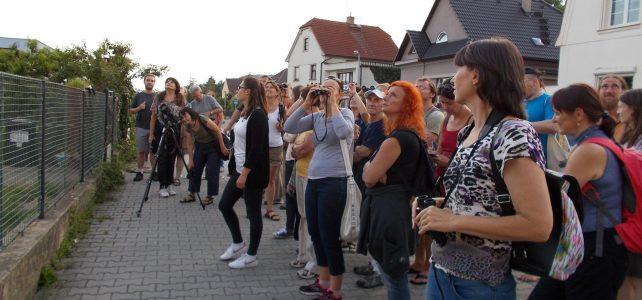 Večerní vycházka za ptáky a netopýry v Praze – Radotíně