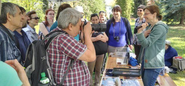 City Nature Challenge v Kroužkovací stanici Národního muzea