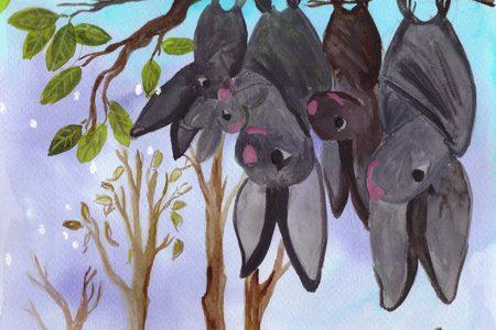 O netopýrech a koronaviru pro děti