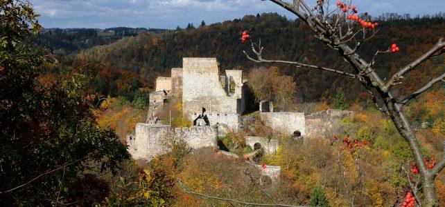 Netopýří námluvy na hradě Cornštejn