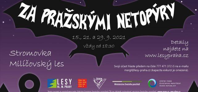 Podzimní vycházky za netopýry do pražských parků