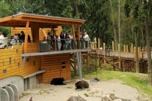 Zoo Olomouc - výběh medvědů a vlků