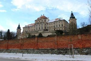V zimě poskytují klášterní sklepy úkryt netopýrům.