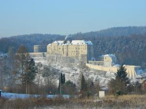 V zimě poskytuje hrad útočiště několika druhům netopýrů.