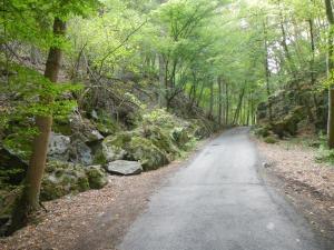 Údolí Studenského potoka