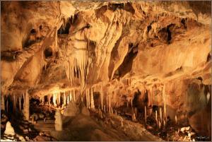 Javoříčské jeskyně jsou známé svou bohatou krápníkovou výzdobou