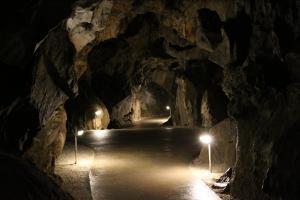 Jeskyně na Špičáku jsou navštěvovány veřejností již od roku 1884
