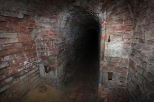Josefovské podzemí je významným zimovištěm letounů