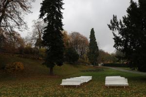 Zámecký lesopark vznikl dle návrhu vídeňského architekta Alberta Esche.