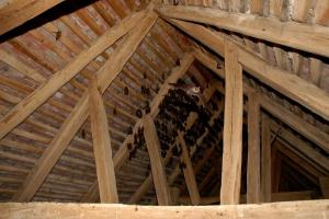 Na půdě kaple sídlí od května do srpna netopýři.