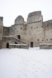 Netopýři na Rabí nacházejí útočiště zejména v zimě.