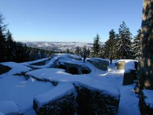 Utočiště netopýrům hrad poskytuje i v zimě