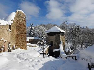V zimě hrad ukrývá hibernující netopýry