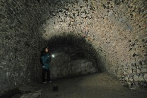 Odborníci každoročně zimující netopýry sčítají