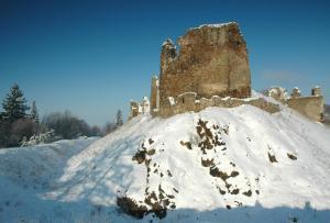 V zimě je hrad významným zimovištěm letounů