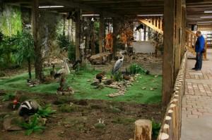 V bývalé sýpce se nachází soukromé přírodovědné muzeum.