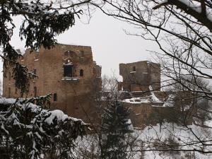 V zimě hrad Krakovec hostí netopýry.