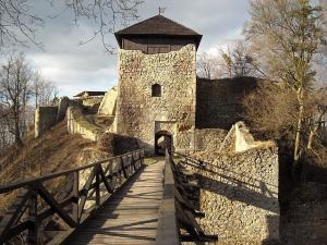 Vstupní věž